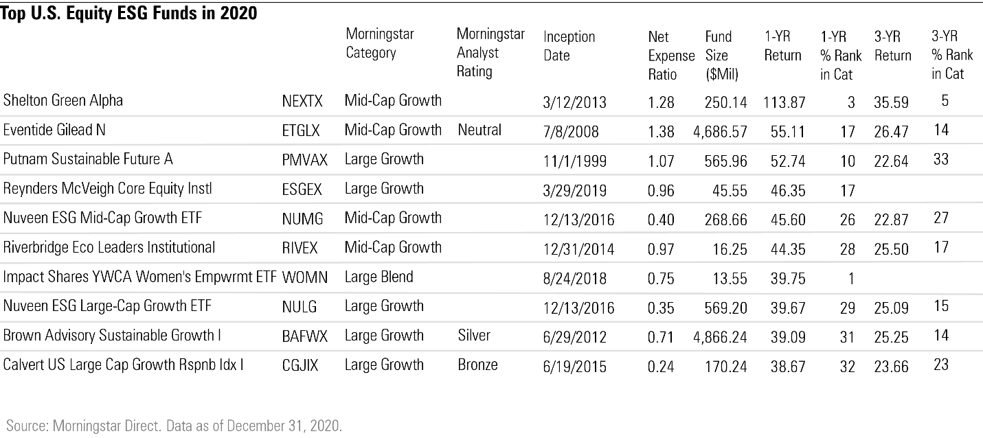 Top US equity ESG funds in 2020