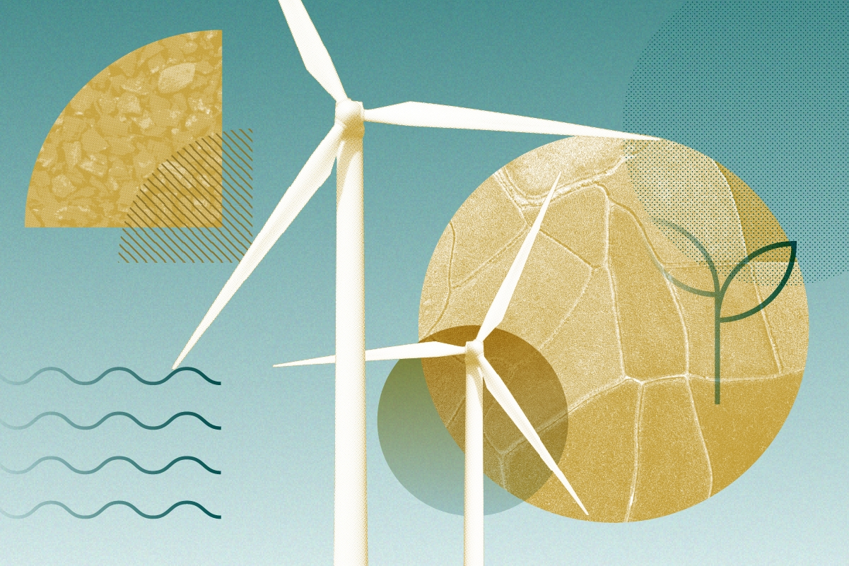 8 Top Funds for Sustainable Investing